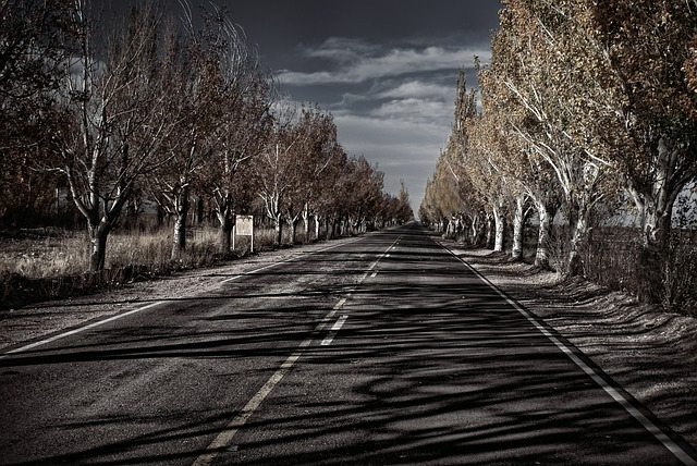 BNA > Mendoza, Argentina: $1123 round-trip- Aug-Oct