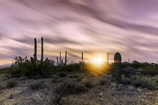 COS > Tucson: $190 round-trip