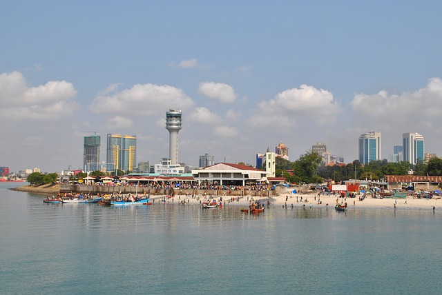 IND > Dar Es Salaam, Tanzania: $854 round-trip- Apr-Jun [SOLD OUT]