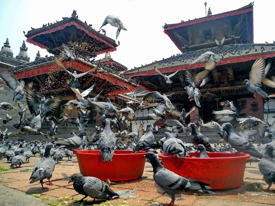 LAX > Kathmandu, Nepal: $405 round-trip- Sep-Nov
