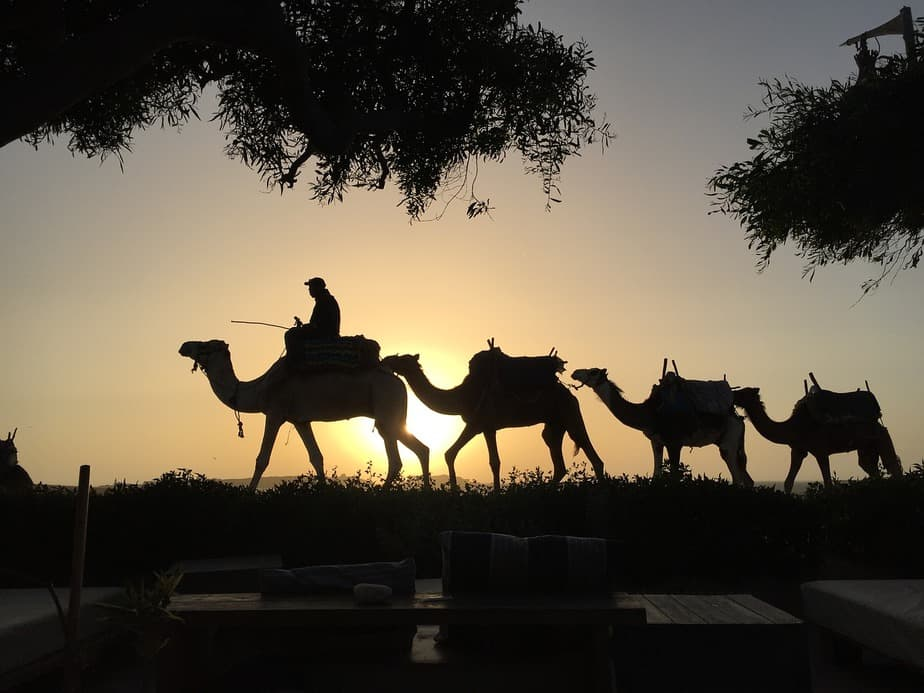 LAX > Casablanca, Morocco: Biz from $2,487 Econ from $525. – Oct-Dec