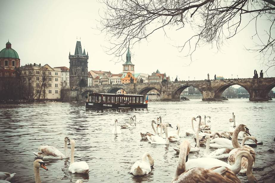 IND > Prague, Czech Republic: $650 round-trip- Mar-May
