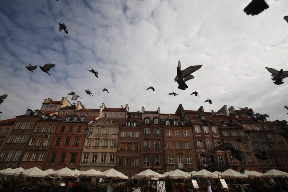 BNA > Warsaw, Poland: $547 round-trip – Feb-Apr (Including Spring Break)